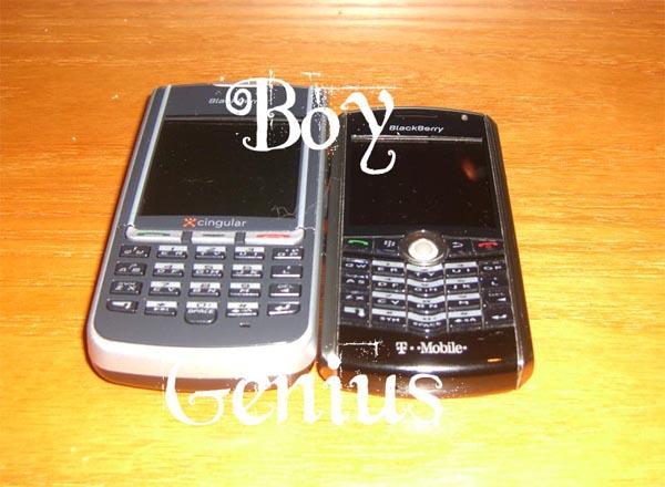 blackberrypearl1.jpg