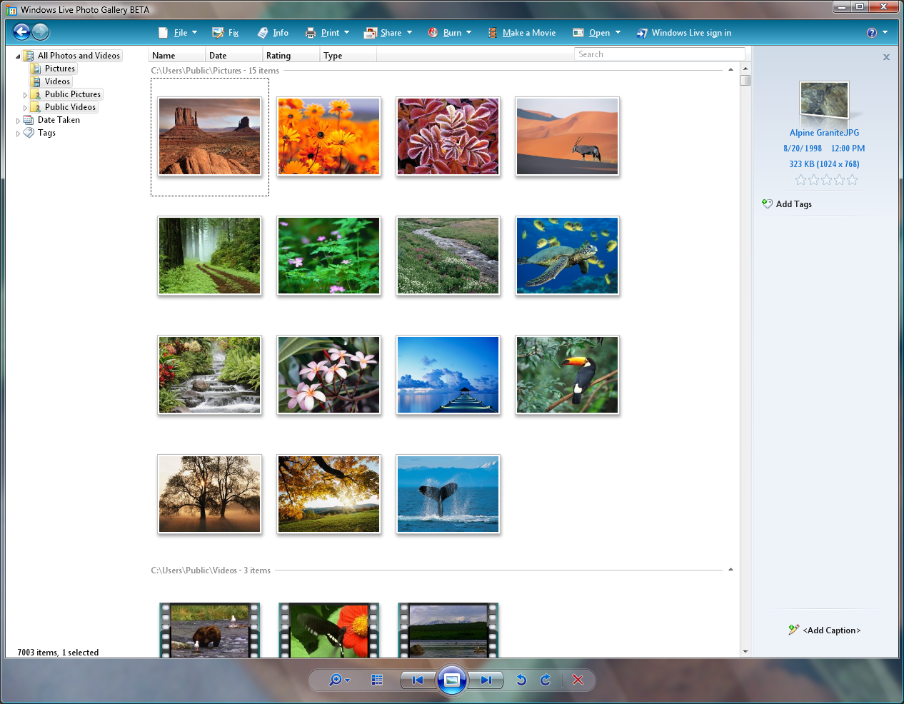 Introducing windows photo gallery with live steroids but still.