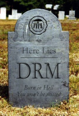 drm-burn-in-hell-729666.jpg