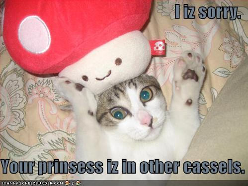 lolcat-funny-picture-mario-cat.jpg