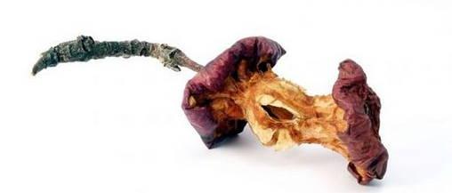 rottingapple