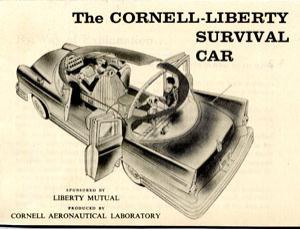 survival-car