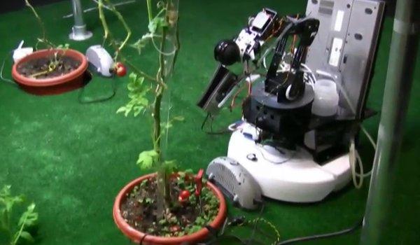 robot gardeners