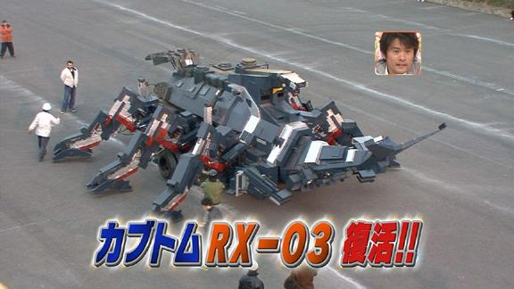 beetle_robot