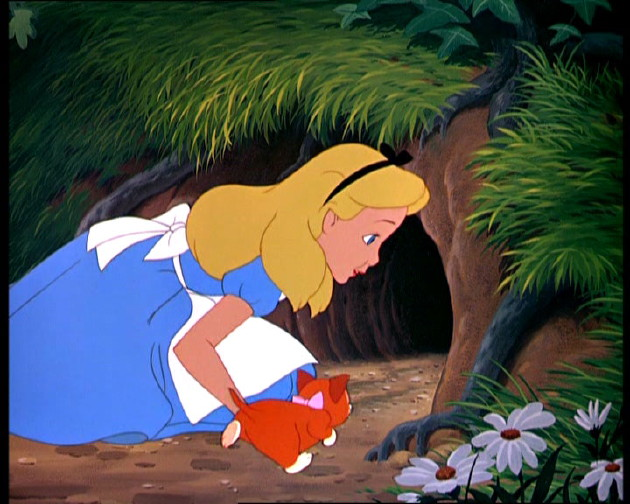 alice-in-front-of-rabbit-hole9