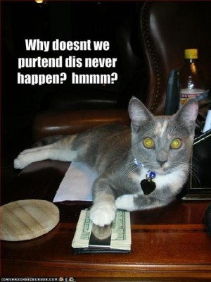funny-pictures-cat-offers-you-money-to-stay-quiet2