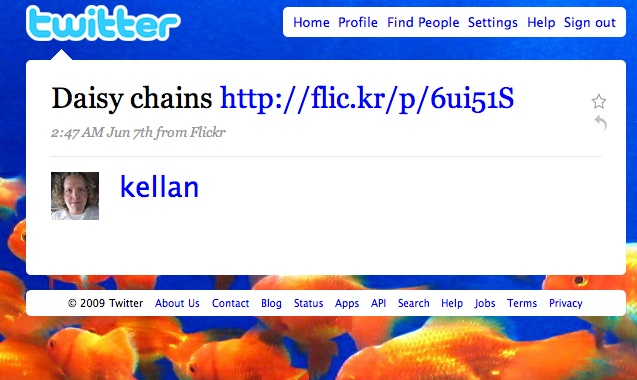 Flickr Tests Twitter Integration With Email Uploads | TechCrunch