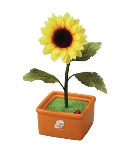 sunflower_sega_hanappa