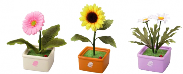 sunflower_sega_hanappa_2