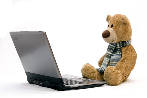 bear-and-laptop