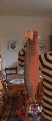 swedishfish21