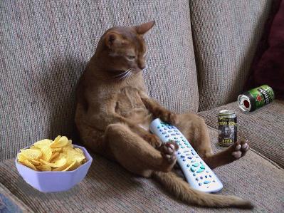 couch_potato