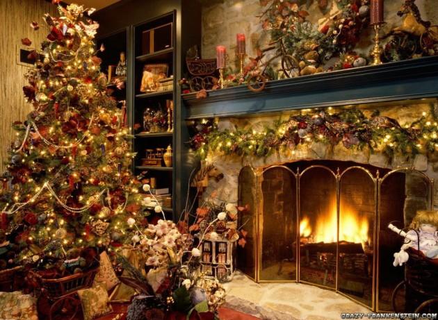 Cat proof christmas tree failblog dating