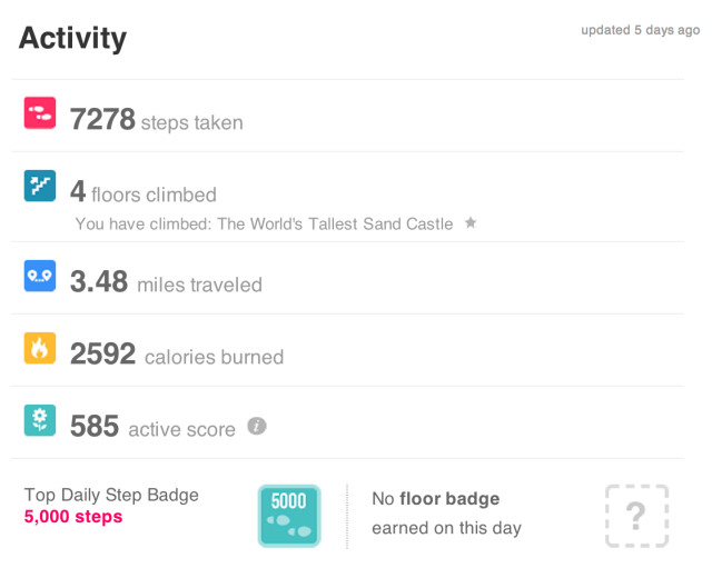 Fitbit One Review Slightly Flawed But Still A Great Way To