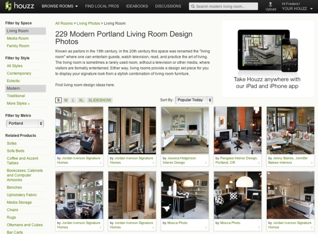houzz_large_modern