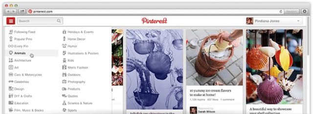 Pinterest Nav Close-Up