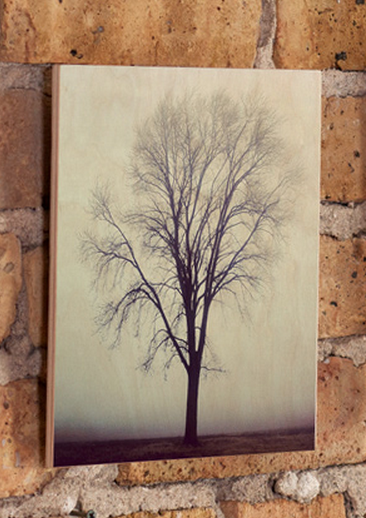 instathis prints out your instagram photos on wood or acrylic techcrunch. Black Bedroom Furniture Sets. Home Design Ideas