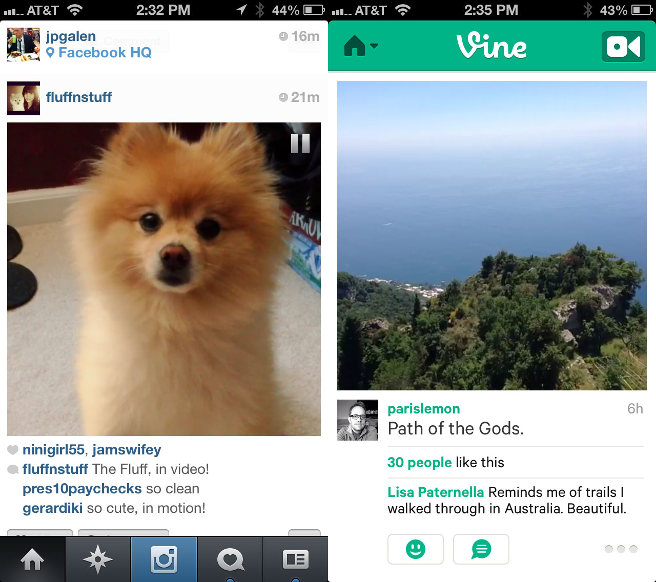 Image of: Best Vines Techcrunch Instagram Video Vs Vine Whats The Difference Techcrunch