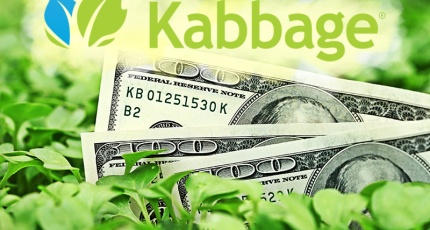 Kabbage The Online Platform That Loans Money To Businesses And Individuals Using A Wide Set Of Data Algorithms Measure Credit Worthiness
