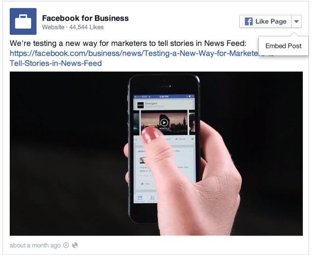 Facebook Video Ad