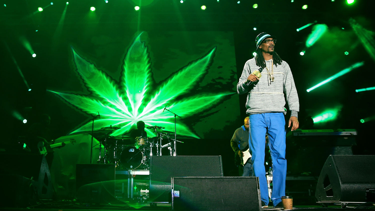 Snoop dogg is raising a fund for investing in weed startups snoop dogg is raising a fund for investing in weed startups techcrunch kristyandbryce Gallery