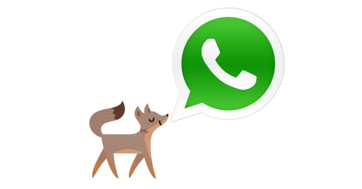 A Year Later, $19 Billion For WhatsApp Doesn't Sound So