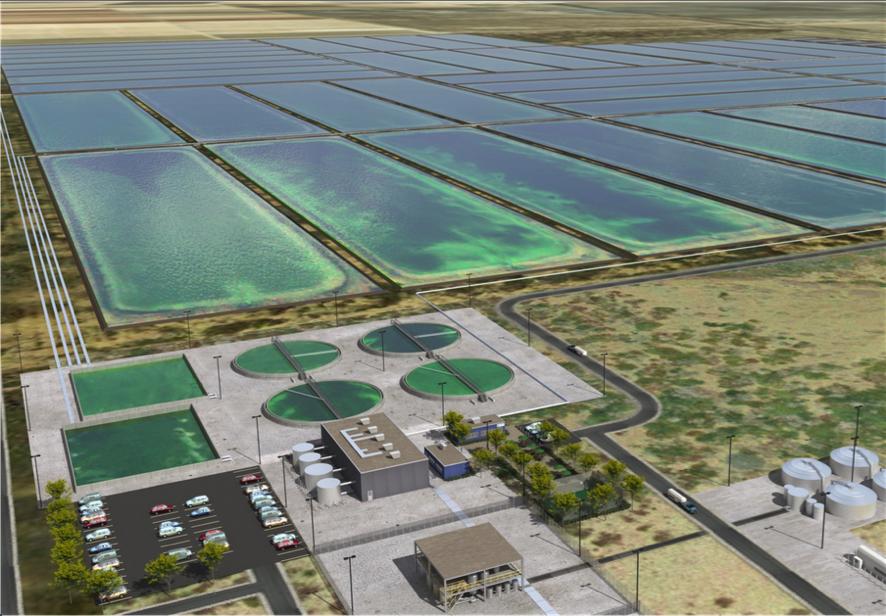 Sapphire Energy's Algae Field Concept Image (www.saphireenergy.com)