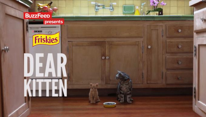 dear-kitten