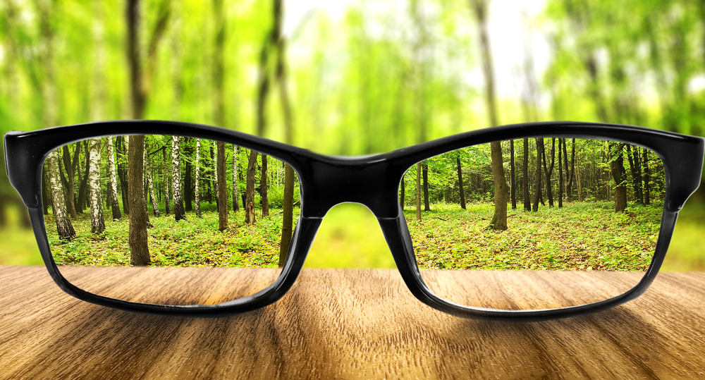 glasses, vision, trees