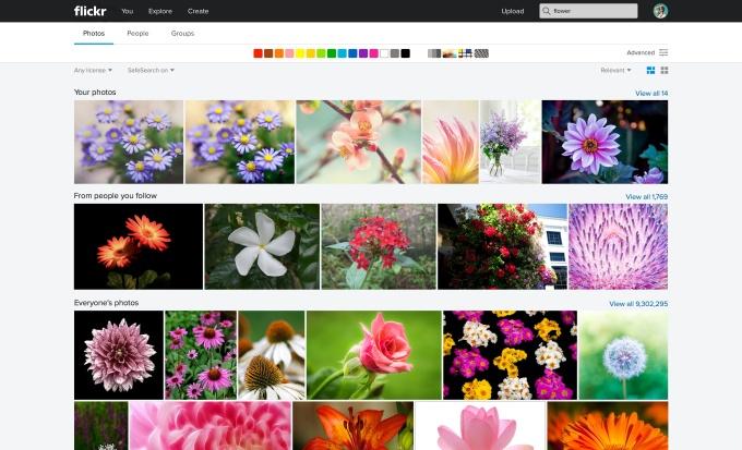 Flickr_Web Search