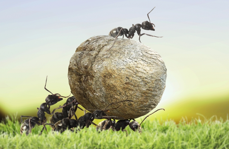 Alibaba Affiliate Ant Financial Confirms Series A Funding At