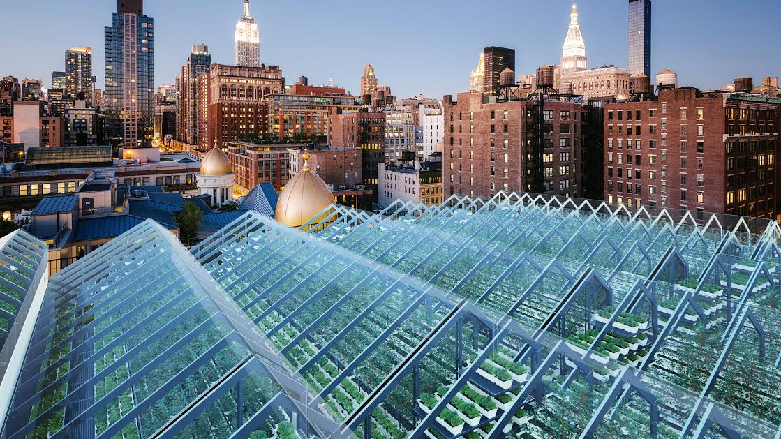 Urban Rooftop Greenhouse