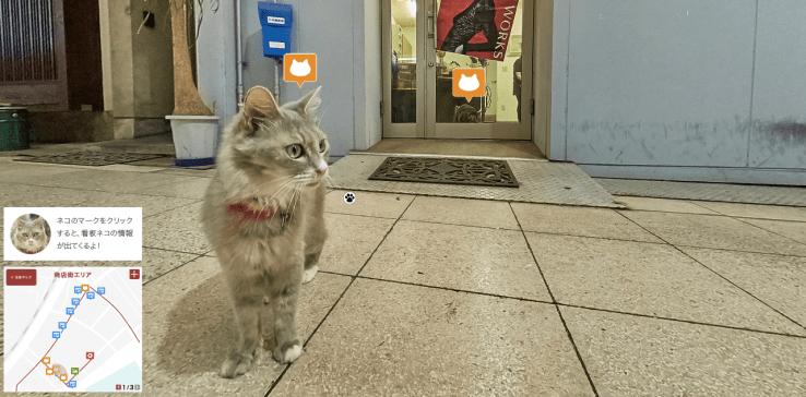 cat map 3