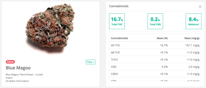 Confident cannabis Magoo