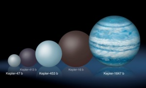 Illustration of several circumbinary planets discovered compared to Kepler-1647b / Image courtesy of NASA