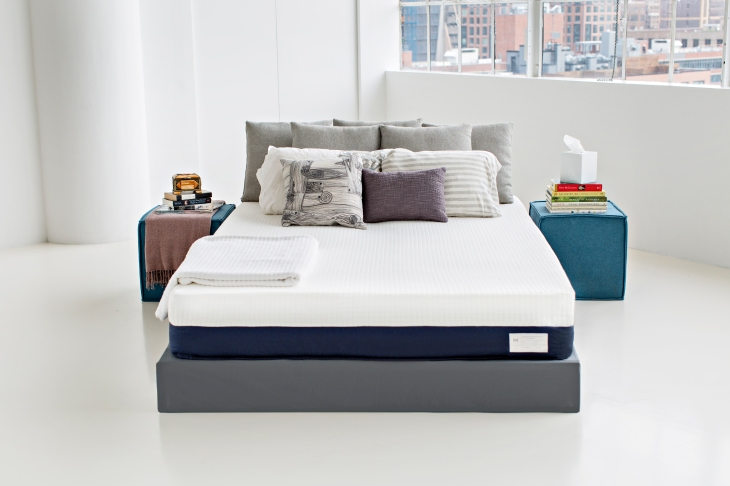 A New York City Startup Called Helix Sleep Inc Raised 7 35 Million In Series Funding To Grow Its Bespoke Mattress Business According Cofounder Adam