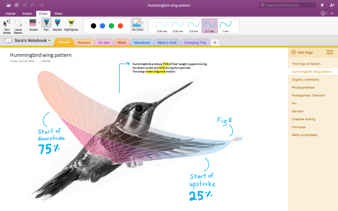 hummingbird screenshot