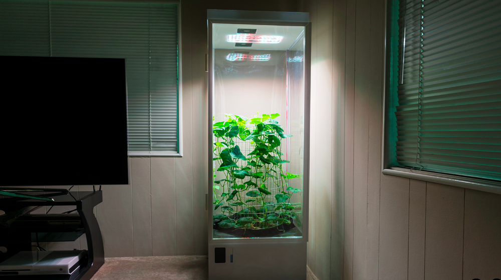 7sensors Grow Box Will Automatically Care For Your Plants
