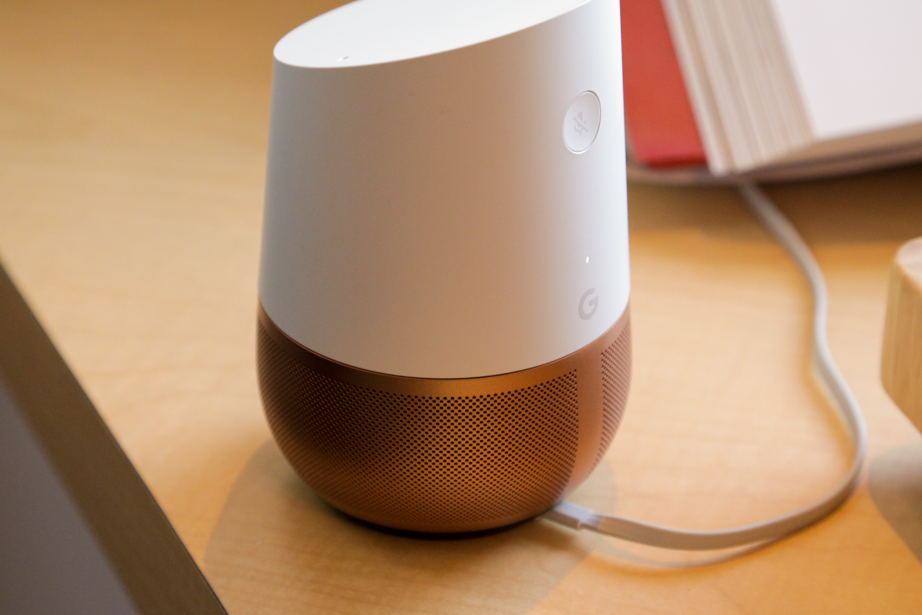 google_home_demo-2