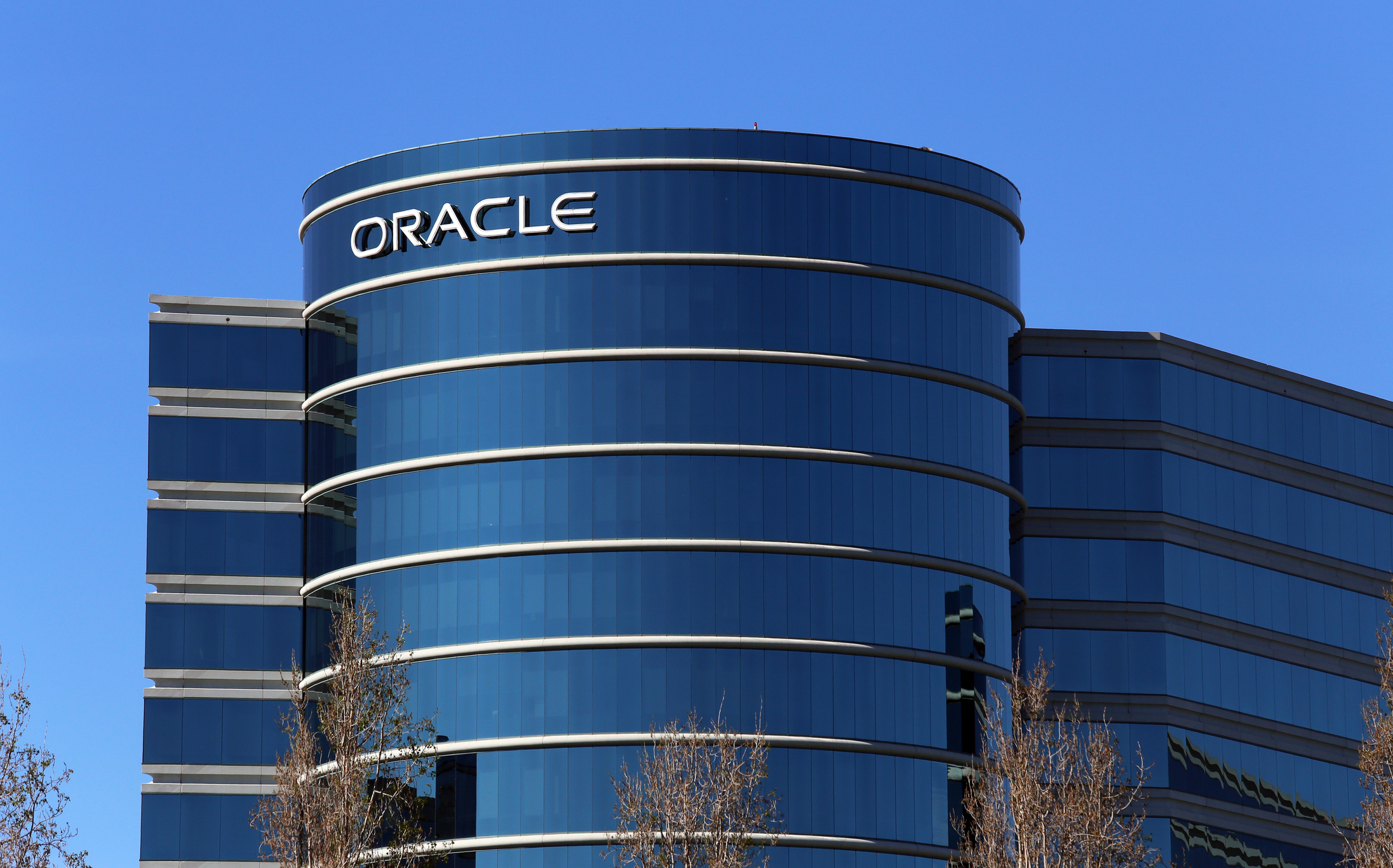 Dating ring co-founders of oracle corporation