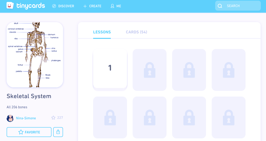 tinycards_-_flashcards_by_duolingo