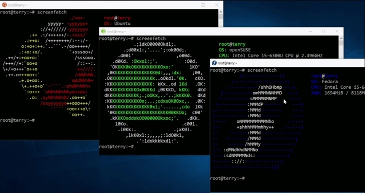 Bash on Windows 10 goes beyond Ubuntu and gets support for