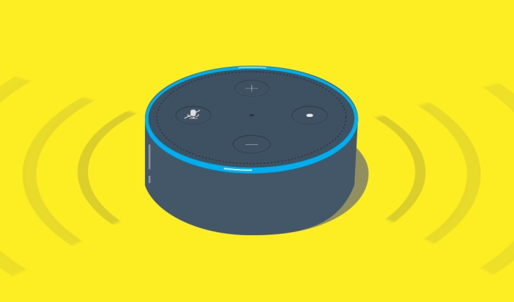 Earlier This Year Amazon Rolled Out A New Feature That Allowed Alexa Device Owners To Create Their Own Custom Skills Using Preconfigured Templates