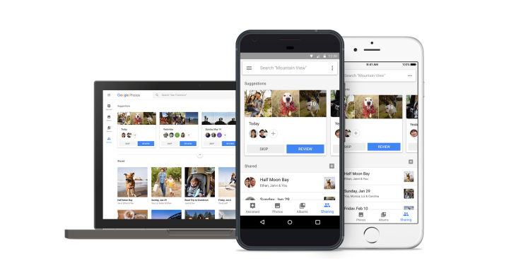 Google Photos adds smarter sharing, suggestions and shared