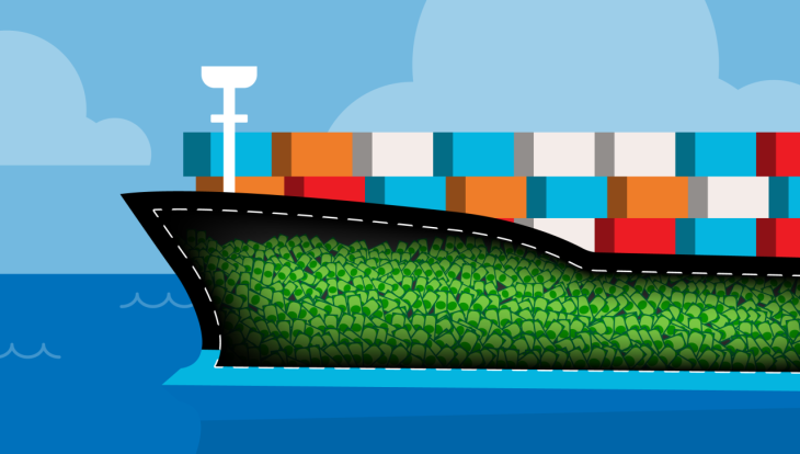 Freight startup Flexport soars from 'unsexy' to $800M