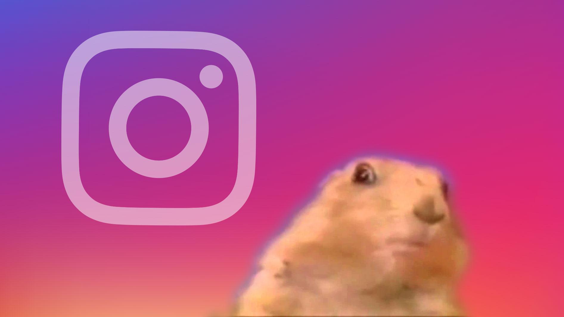 Instagram Superzoom records dramatic close-up videos | TechCrunch