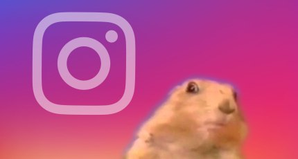Instagram Superzoom records dramatic close-up videos | TechCrunch