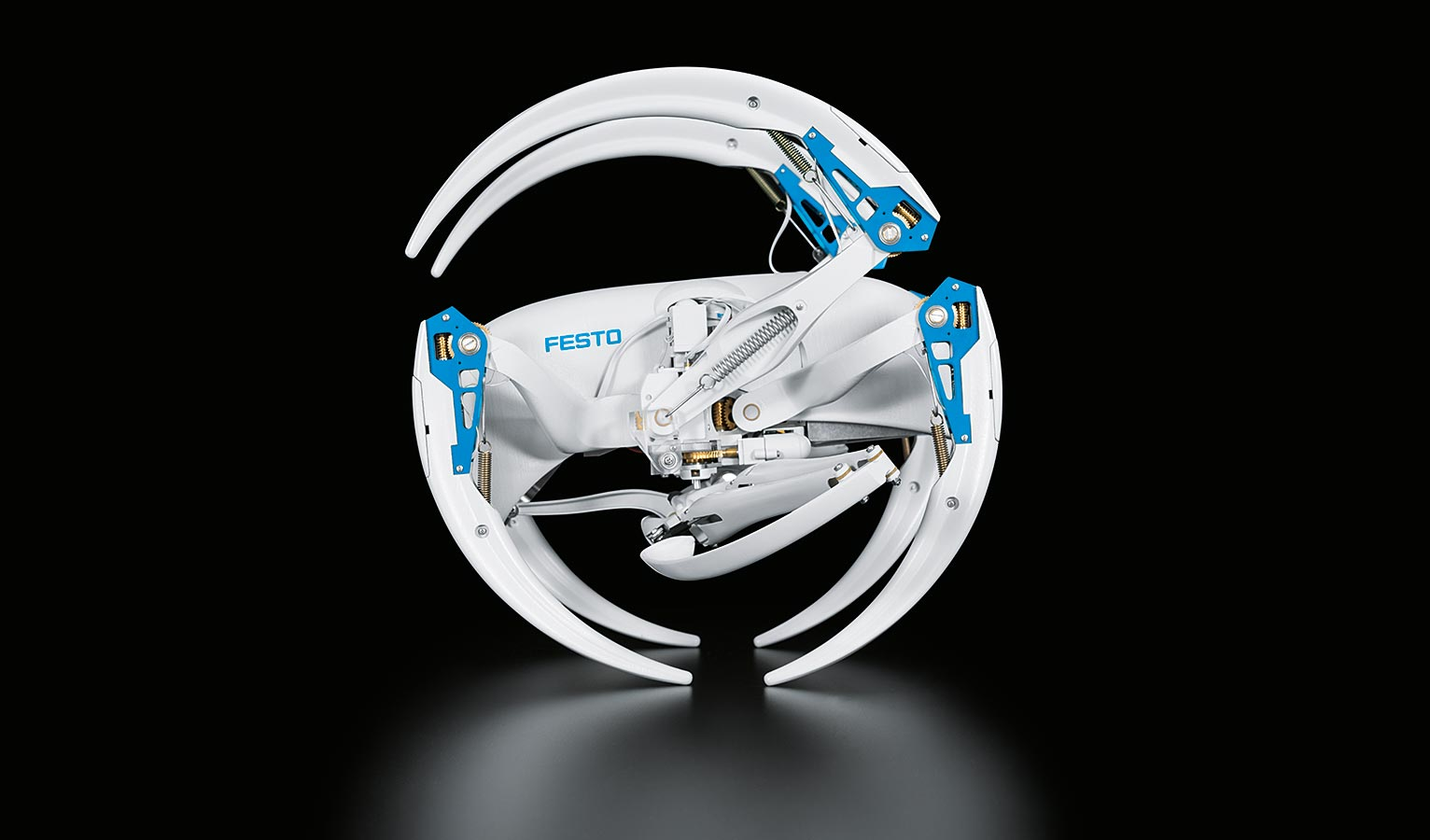 Festo's latest bio-inspired creations are a robo-bat and rolling robo-spider