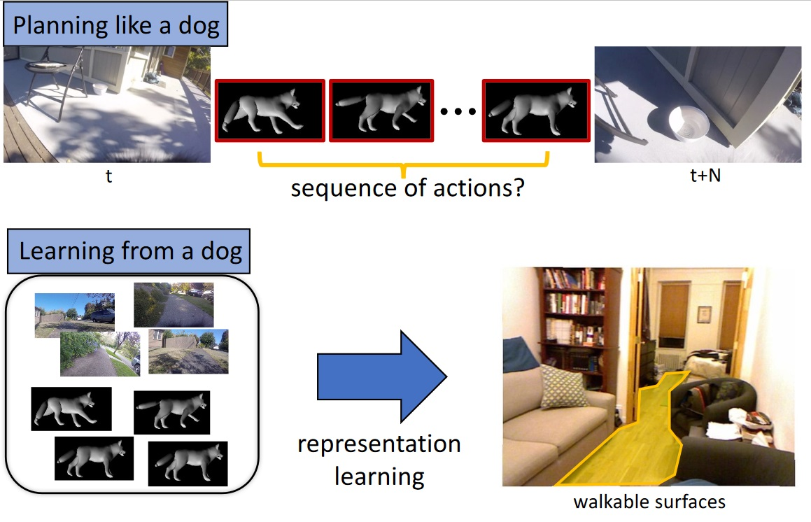 Who's a good AI? Dog-based data creates a canine machine learning system