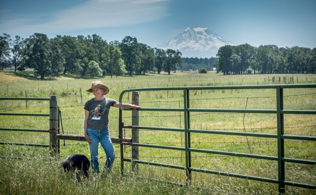 Crowd Cow, offering ranch to table meats, picks up $8 million from Madrona, Ashton Kutcher
